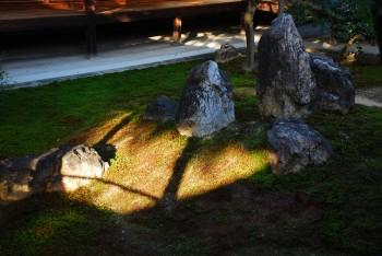 庭石と日差し