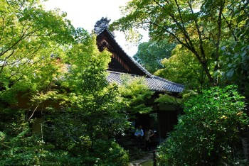 高桐院屋根