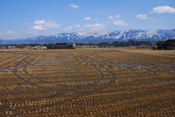 水田と残雪の山