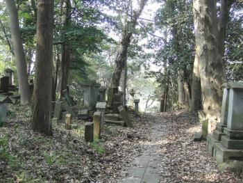 西養寺墓地の道