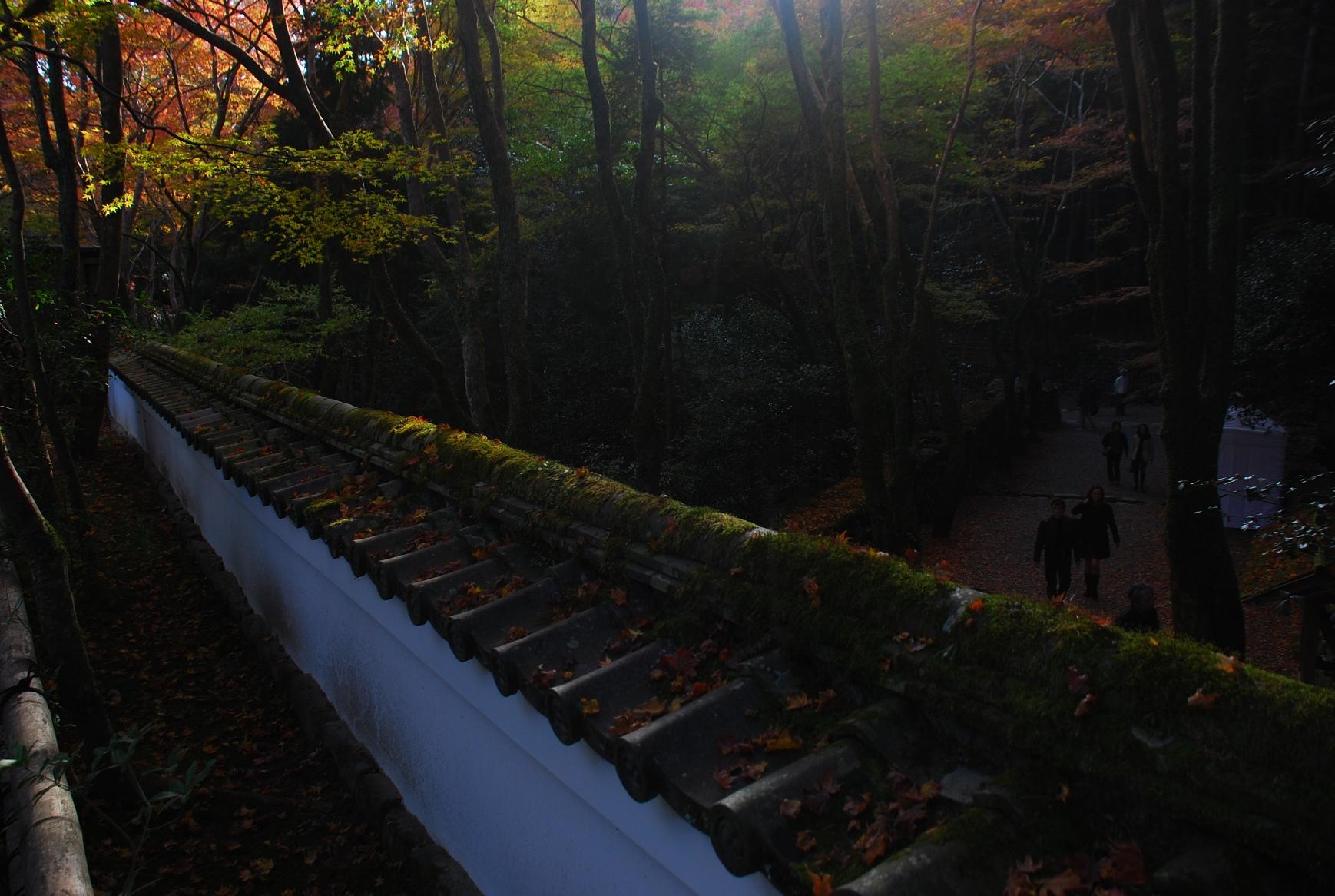 土塀屋根の紅葉