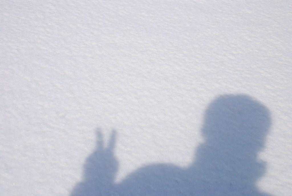 雪の上の影